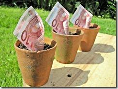 euros-dans-des-pots